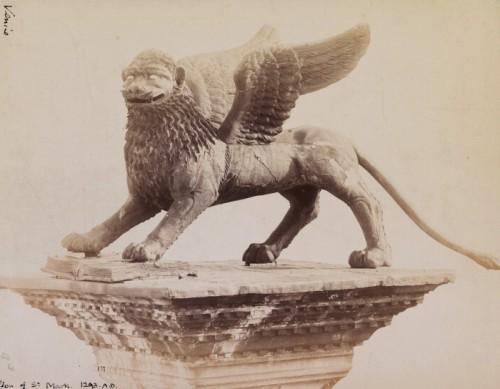 Uno de los leones de la Plaza de San Marcos, por Carlo Naya